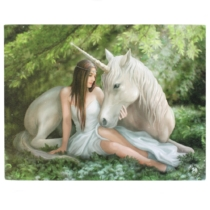 Kép Spirit Of Equinox 19x25cm - WP_03135