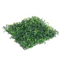 Garden of Eden Műsövény - természetes zöld - 25 x 25 cm