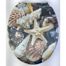 3D Wc-Ülőke - Mdf - Rozsdamentes Acél Zsanérokkal - Kagylók