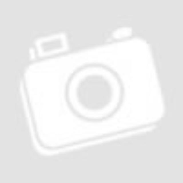 Bath Duck Wc-ülőke - Mdf - Mintás - Cink Zsanérokkal - Pingvin